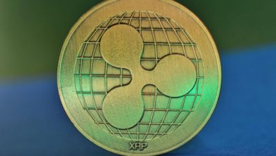 Photo of XRP Price in Danger of a Major Drop if Support Levels Fail to Hold