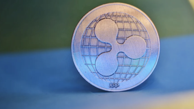 XRP Foresees a 30 Price Boost Crypto Rally Is Around the Corner